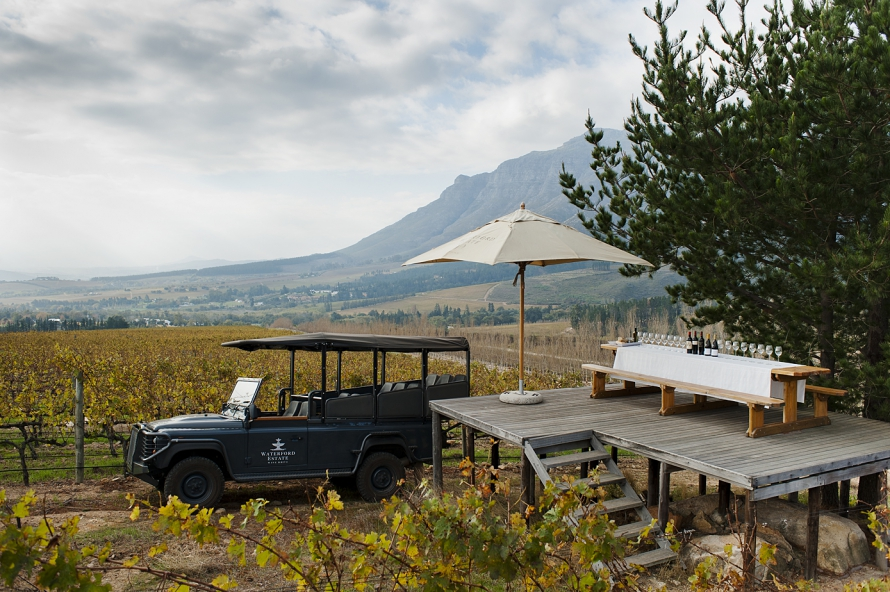 Cape Winelands Private Wine Tour