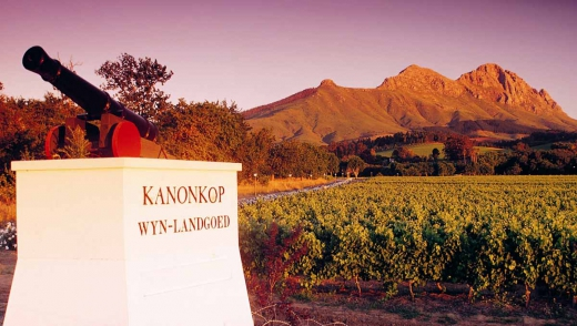Stellenbosch Iconic Private Wine Tour
